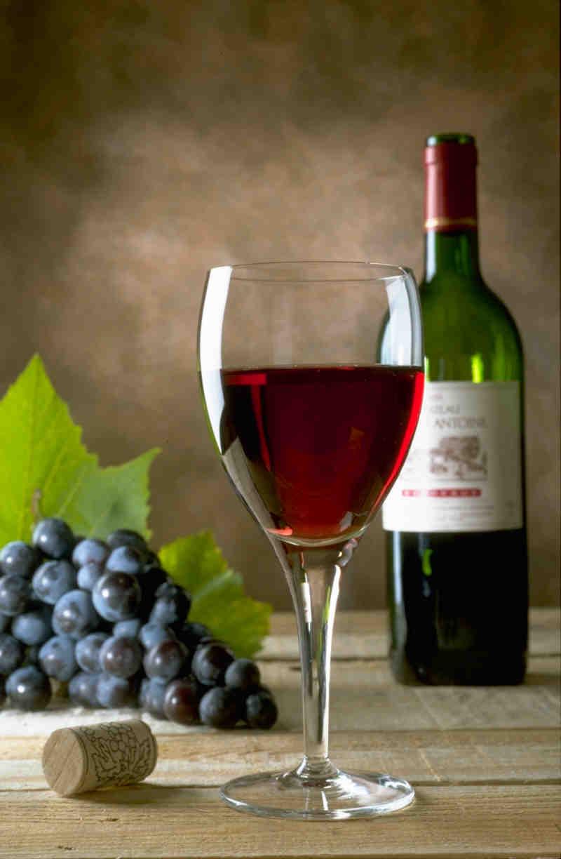Vin provence, buvez avec passion!