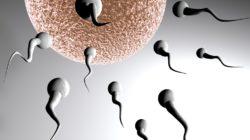 imagesDate-ovulation-3.jpg